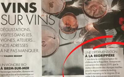 ELLE Magazine – July 2021
